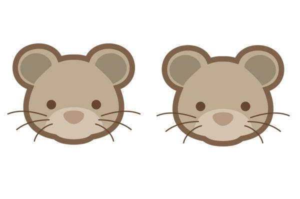 Ratones de buhardilla